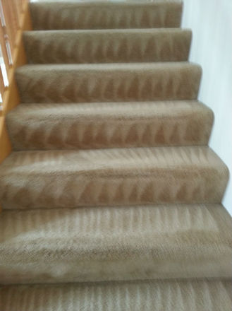 Carpet Cleaning - Commercial